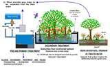 Sewage Pumps Picture Images