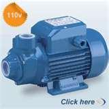 Images of Sewage Pumps 110v