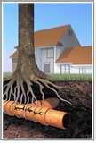 Sewage Pumps Oakville Photos